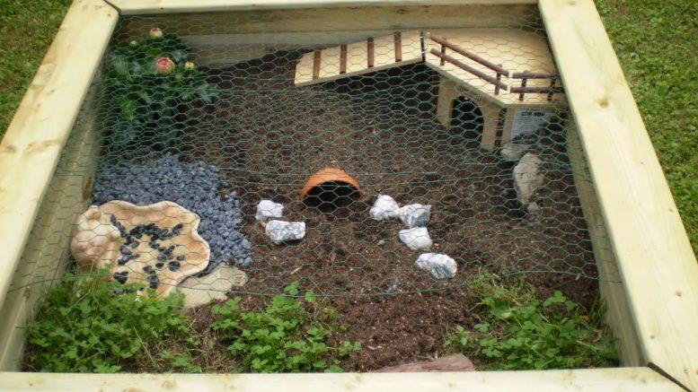 Comment faire un enclos pour tortue - Comment faire partir des abeilles de terre ...